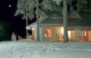 Дом под снегом