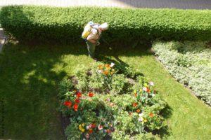 сады в Испании