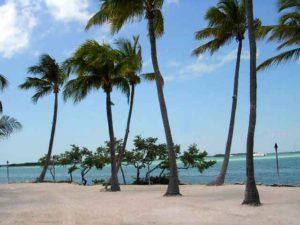 берег Флориды